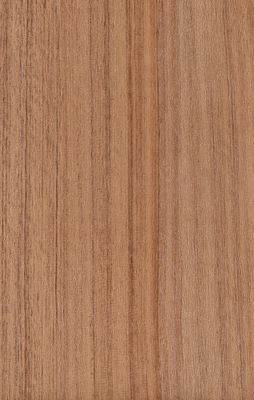 Mouldproof Wood Grain Wall Paneling 100% Virgin material SGS Sertifikasi